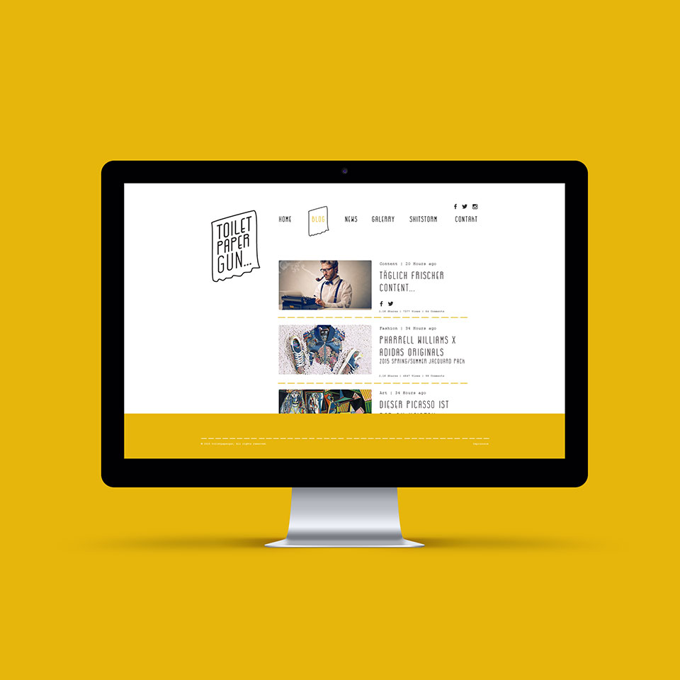 Blog Website for Toilet Paper Gun Project